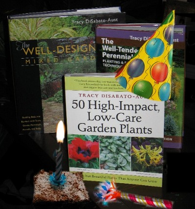 Let 39 s celebrate for Low care plants